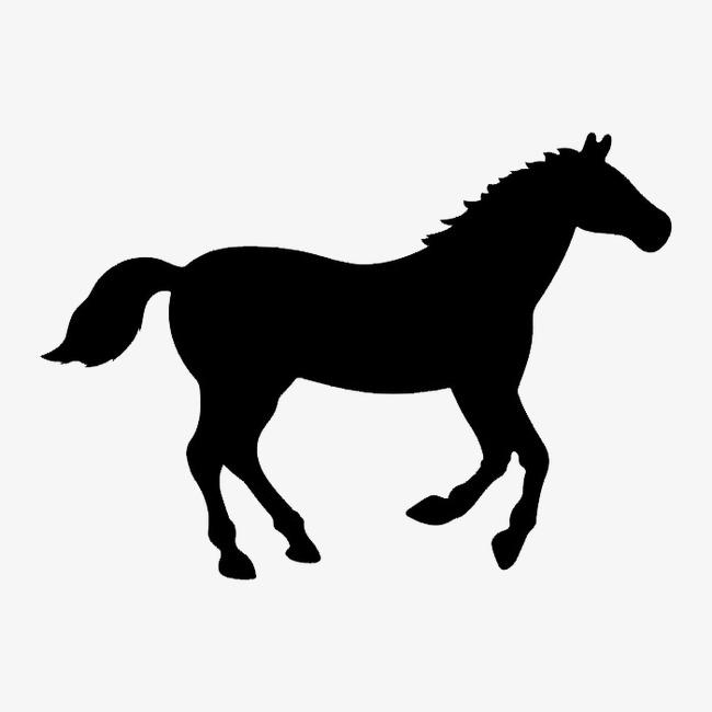 黑白图案动物 纹