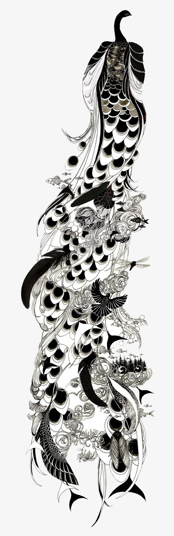 孔雀黑白手绘画