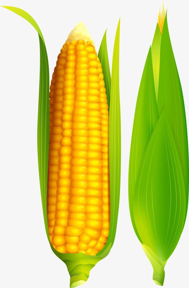 玉米型笔盒手工制作