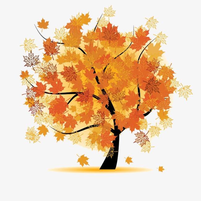 枫树素材图片免费下载 高清效果元素png 千库网 图片编号2808256