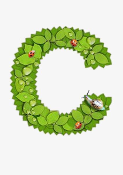 字母树叶c负责设计师装修哪些工作内容图片