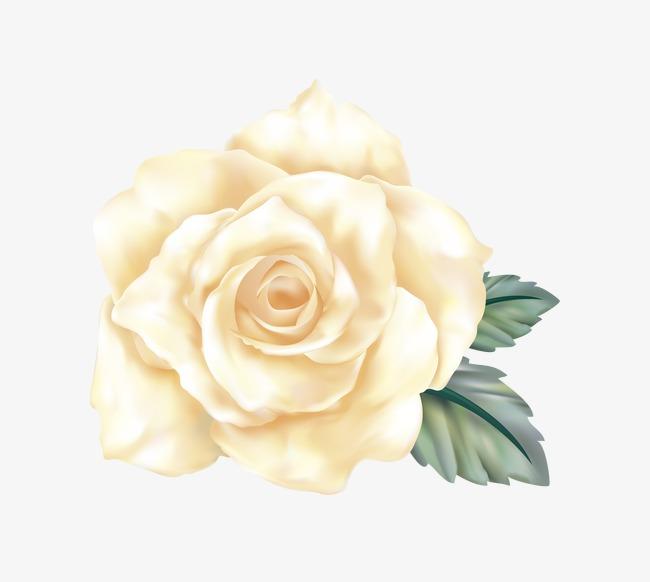 手绘水粉花卉(图片编号:15397872)