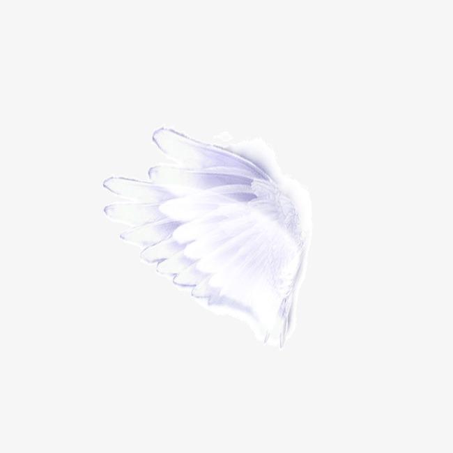 picsart素材   翅膀