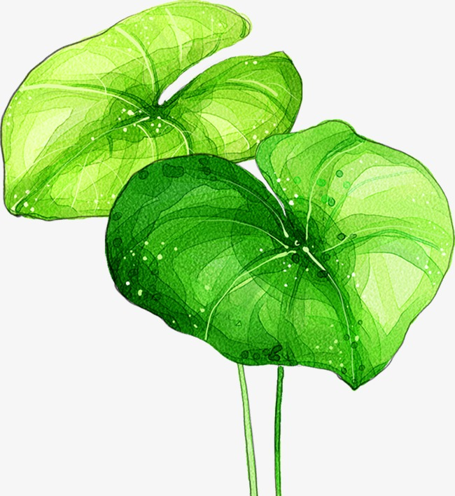 绿色树叶图案
