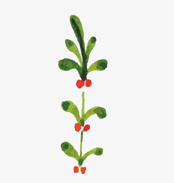 水彩画模板下载 水彩画图片下载小树叶红色的果实简单水彩画树叶小草