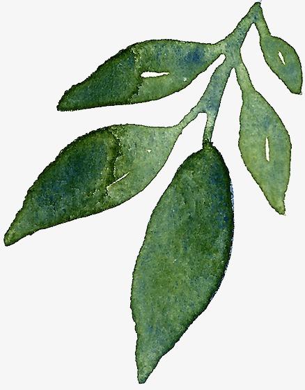 各种树叶的编法图解