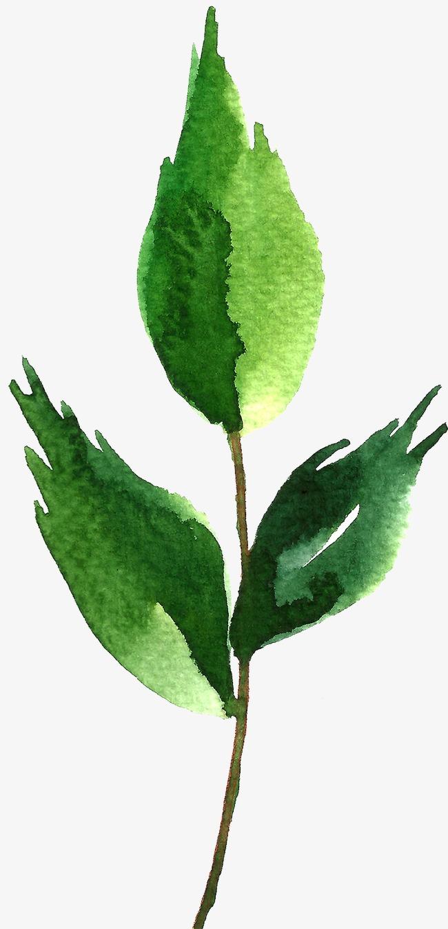 背景 壁纸 绿色 绿叶 树叶 植物 桌面 650_1347 竖版 竖屏 手机