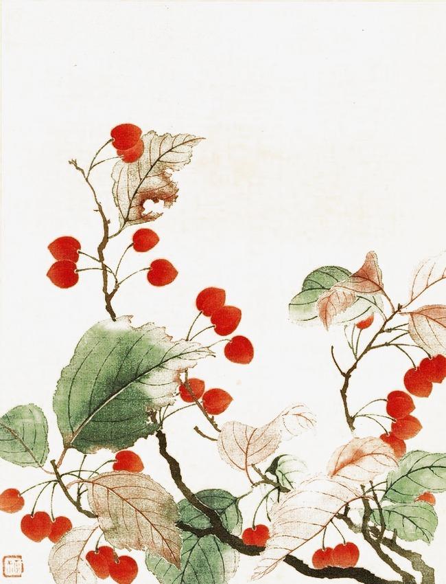 手绘樱桃树
