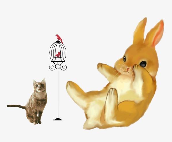 手绘插画兔子