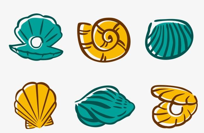 矢量手绘彩色贝壳