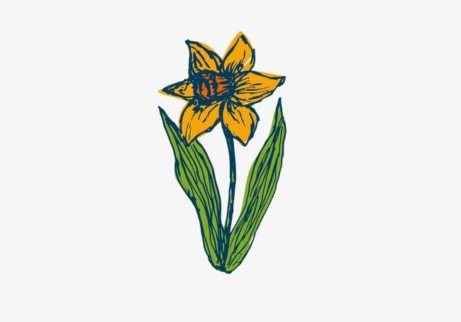 手绘小黄花植物