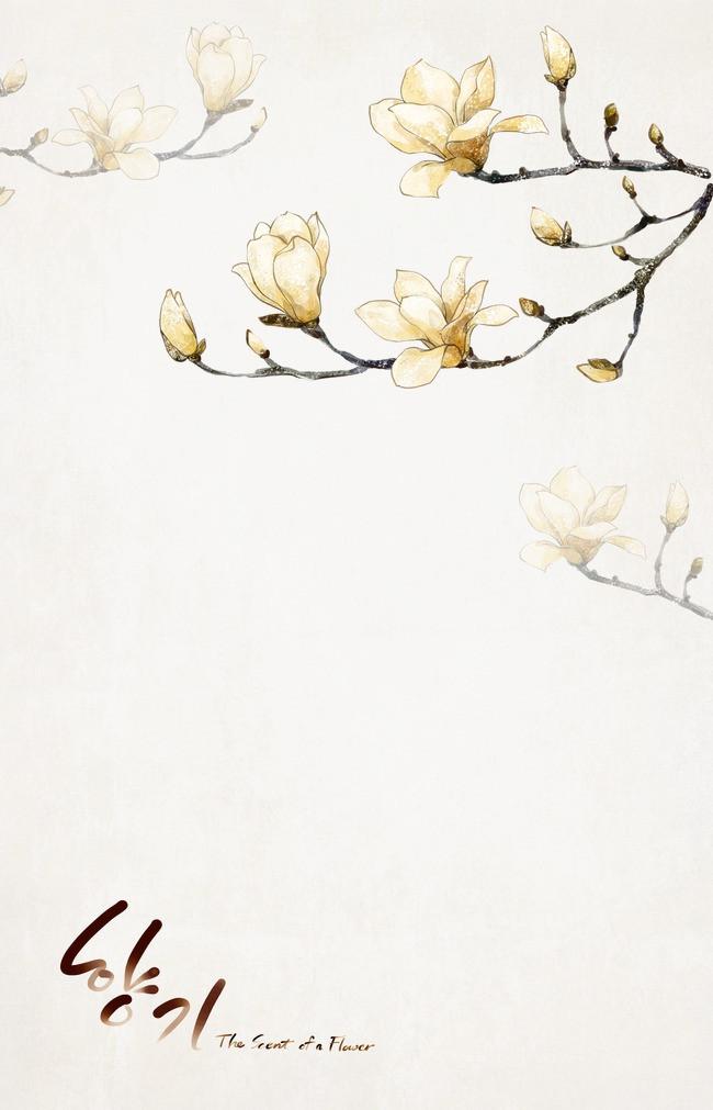 韩国手绘白玉兰psd分层模板