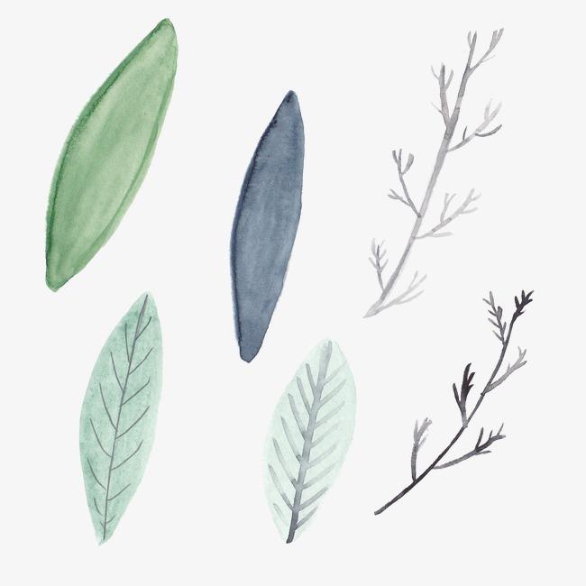 水彩树叶图片