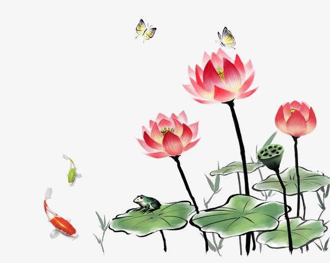 中国风手绘荷花荷叶蝴蝶鲤鱼