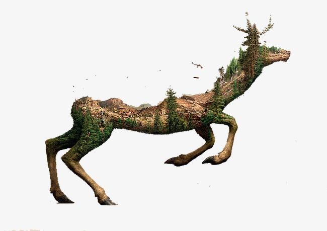 森林动物【高清装饰元素png素材】-90设计