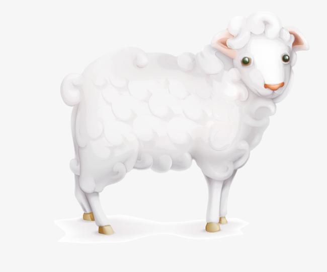 动物绵羊头创意速写