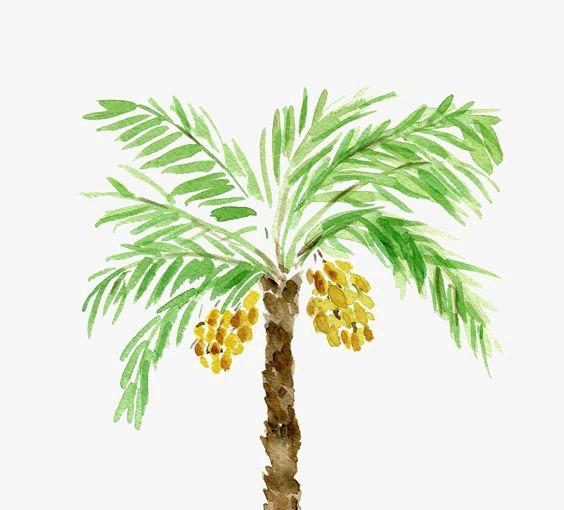 手绘 卡通 水彩 创意椰树             此素材是90设计网官方设计