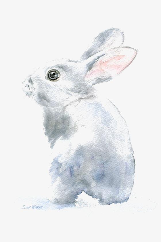 手绘 卡通 简约兔子 创意兔子 可爱兔子 动物             此素材是