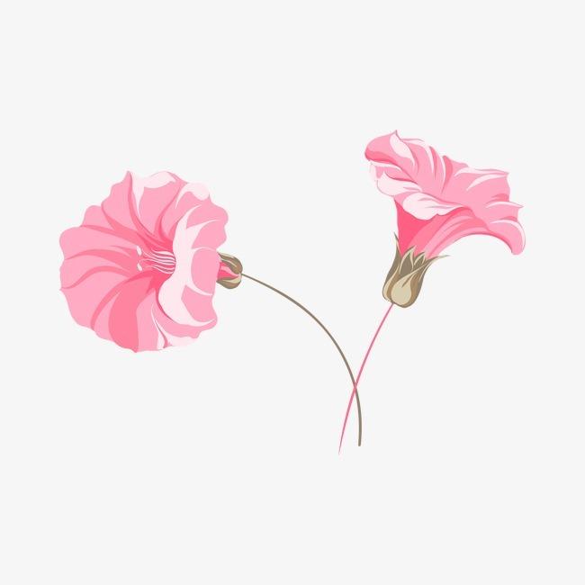 粉色花朵手绘花卉 喇叭花             此素材是90设计网官方设计