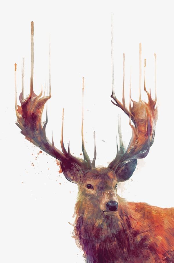 麋鹿手绘插画
