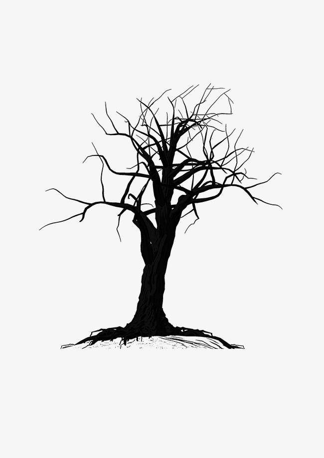 绘画植物 枯树 黑白
