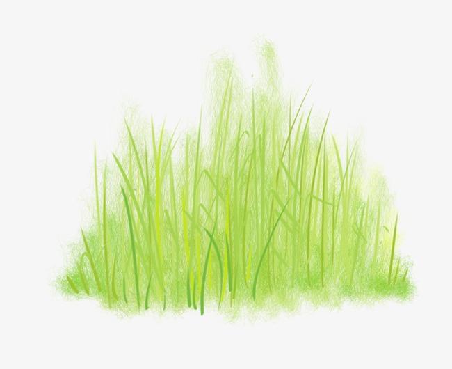 绿色手绘小草png素材-90设计