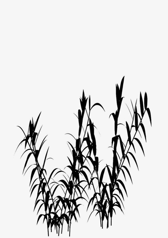 竹子 竹叶 水墨画 中国画图片
