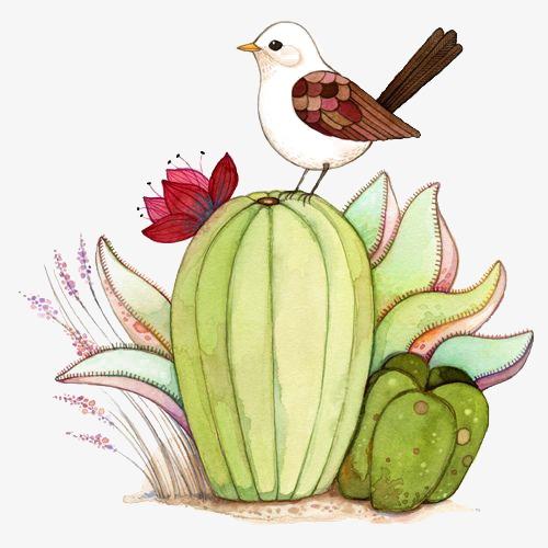 植物图片头像-植物图片大全大图唯美_微信头像花朵__.图片