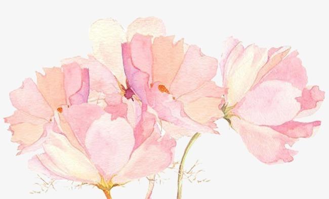 粉色唯美文艺手绘花装饰