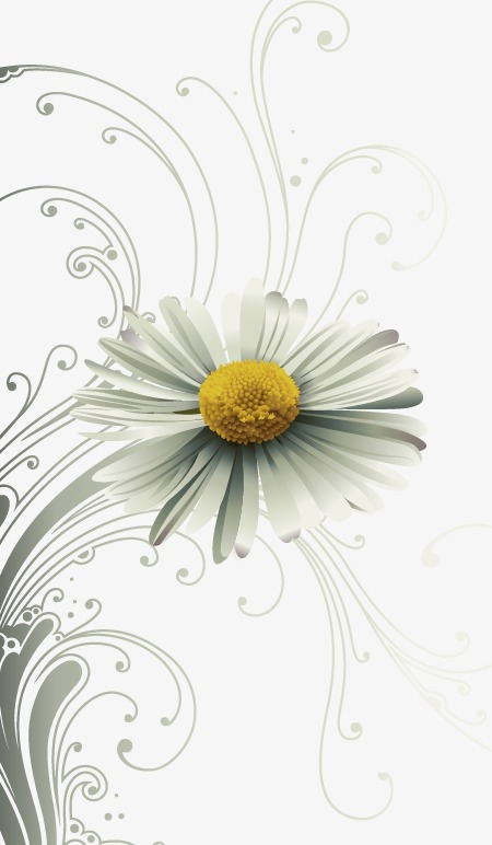 手绘简约白色花朵图案
