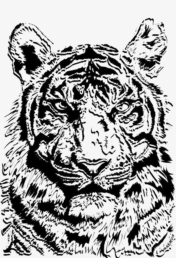 虎头侧面简笔画