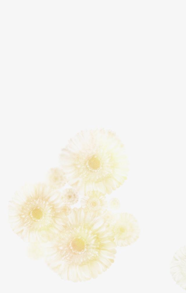 图片 蒲公英背景 > 【png】 蒲公英  分类:手绘动漫 类目:其他 格式