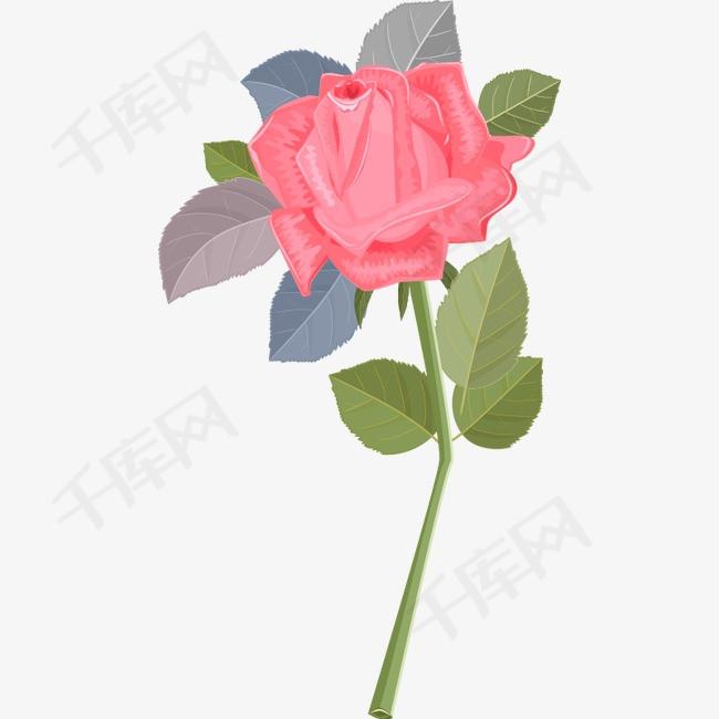 手绘粉色玫瑰花一枝粉红玫瑰手绘节日鲜花飘落装饰婚纱照花瓣玫瑰花花瓣精美粉红玫瑰玫瑰叶叶粉色一枝花