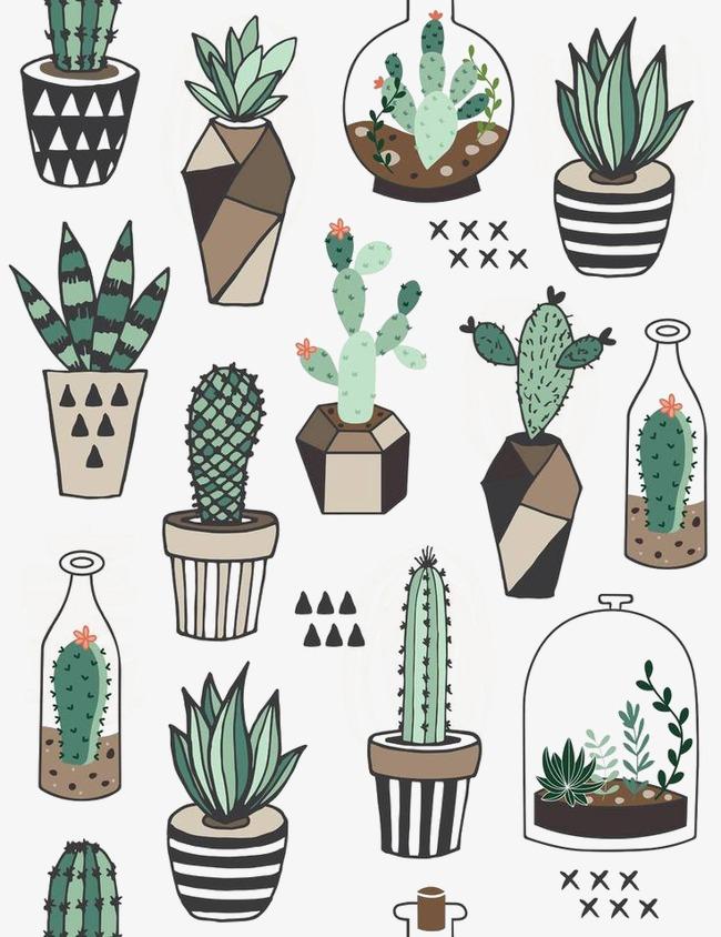卡通手绘多肉植物