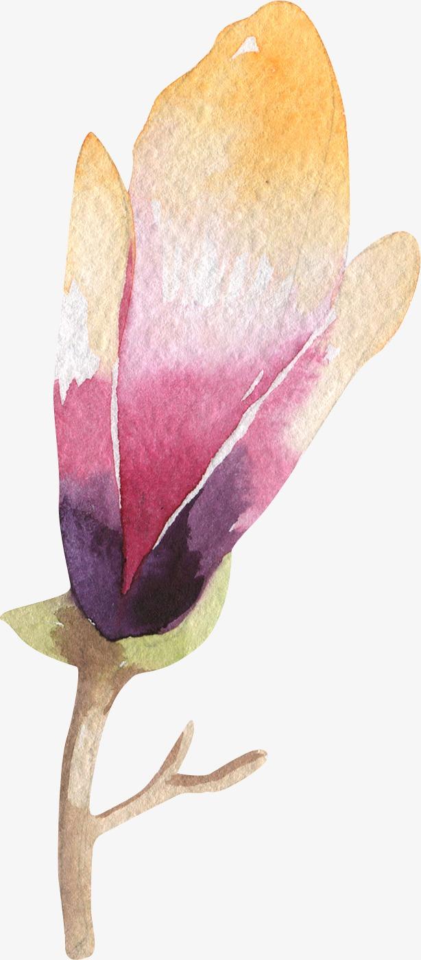 图片 > 【png】 兰花花瓣  分类:手绘动漫 类目:其他 格式:png 体积