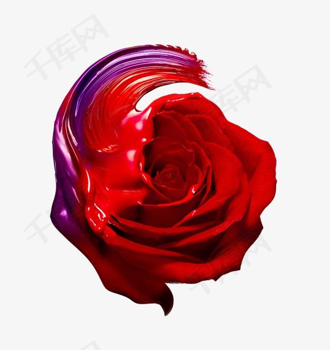 创意的玫瑰花图片