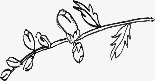 树枝线描泰v树枝酒店图片