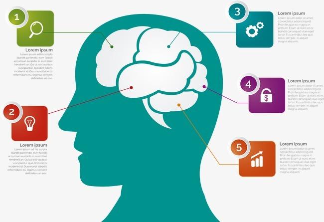 大脑形壮电路板 图标