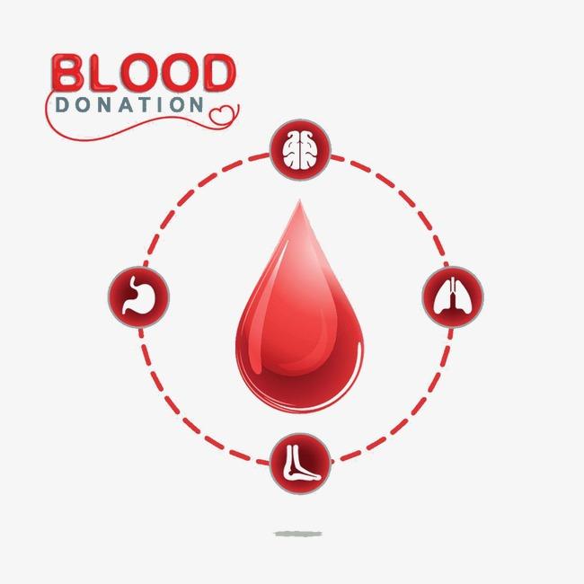 人体器官图标与血滴【高清图标元素png素材】-90设计
