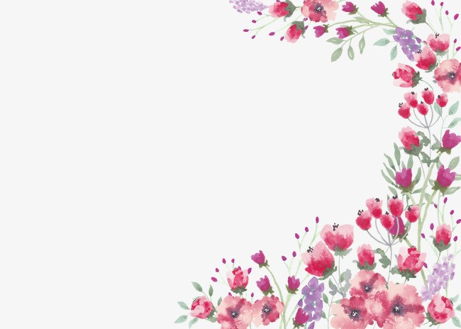 唯美手绘花丛