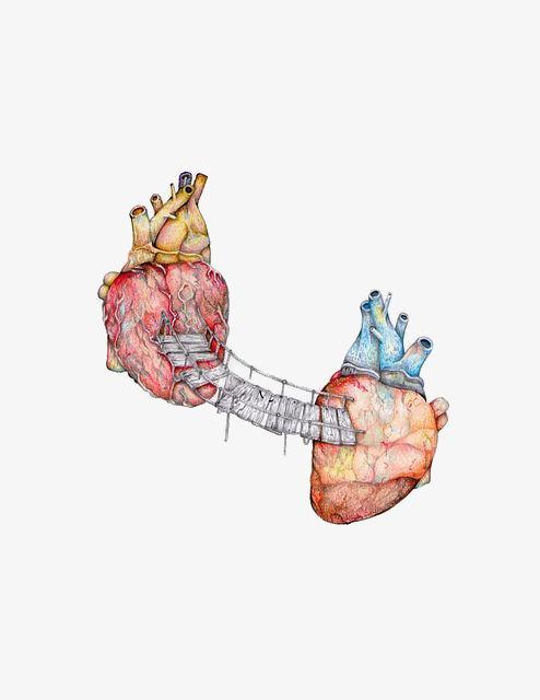 创意心脏插画