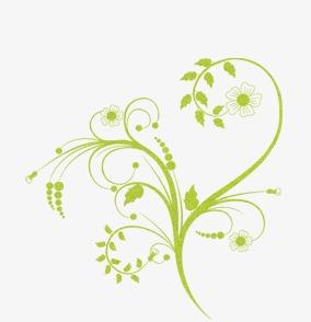 手绘藤蔓素材图片免费下载 高清卡通手绘png 千库网 图片编号3706374