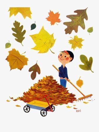 扫落叶的男孩图片
