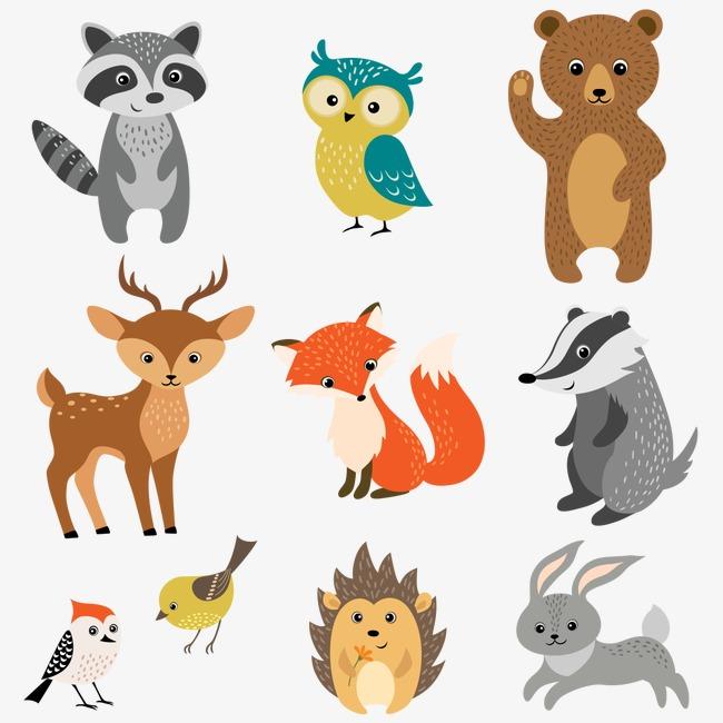 狐狸 小鸟 矢量动物 彩色动物 小兔子猫头鹰             此素材是90