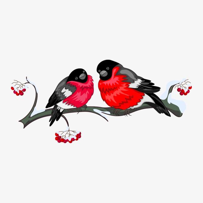 树枝上的卡通小鸟