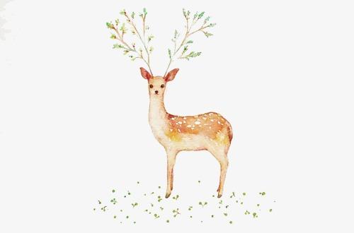 森林系唯美手绘插画【高清png素材】-90设计