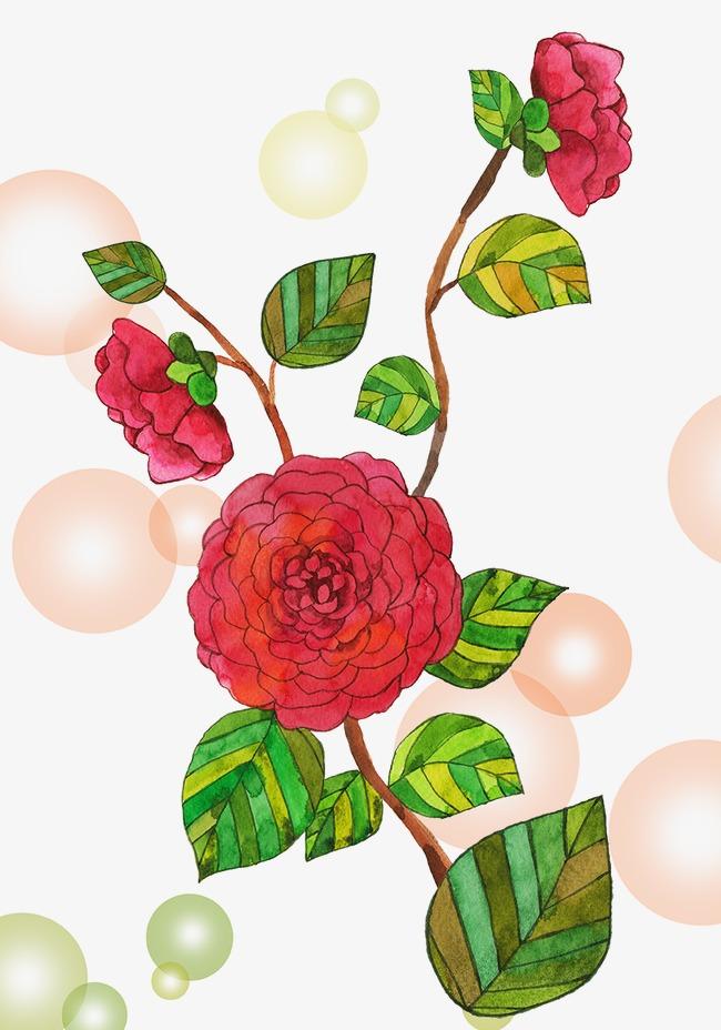 韩式小清新手绘花卉