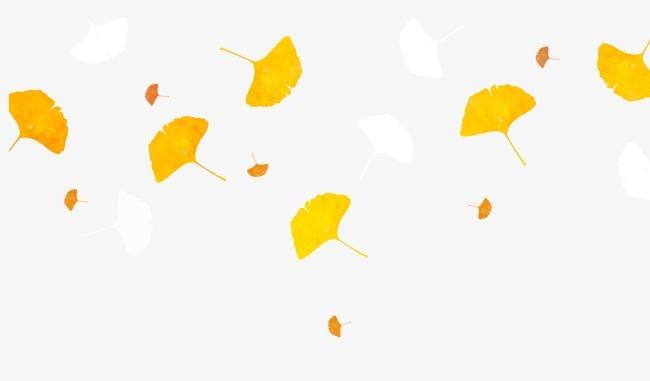 漂浮银杏叶图片
