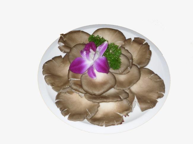 一盘辅食肉松机做平菇图片