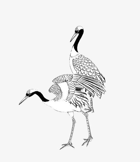 中国风 仙鹤 动物 简笔画中国风 仙鹤 动物 简笔画png免费下载